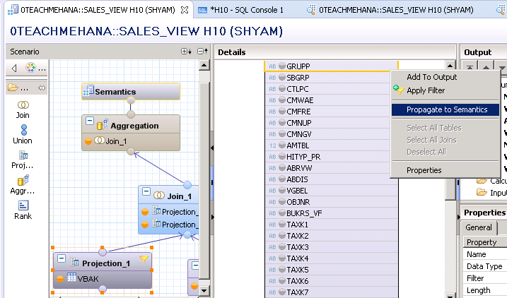 Input Parameters in SAP HANA explained - SAP HANA Tutorial