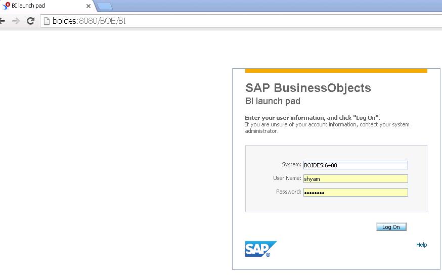 SAP Business Objects Explorer