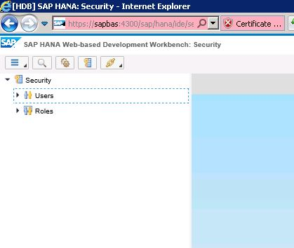 SAP HANA Web Based Development Workbench